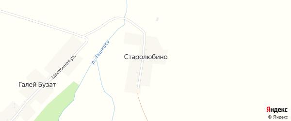 Степная улица на карте деревни Старолюбино с номерами домов