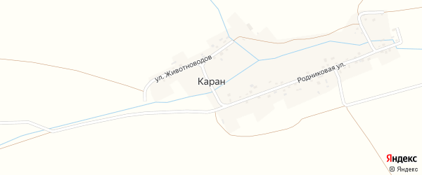 Улица Животноводов на карте деревни Карана с номерами домов