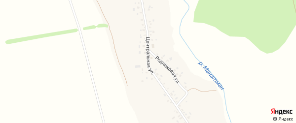 Центральная улица на карте села Старой Васильевки с номерами домов