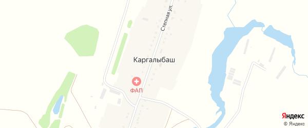 Степная улица на карте деревни Каргалыбаша с номерами домов