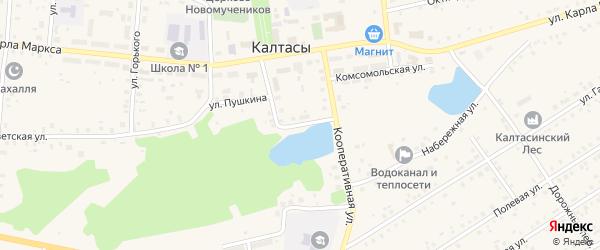 Садовая улица на карте села Калтасов с номерами домов