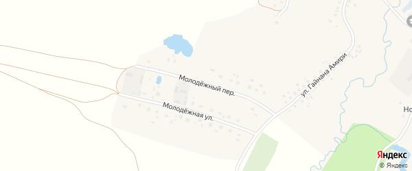 Молодежный переулок на карте села Нового Артаула с номерами домов