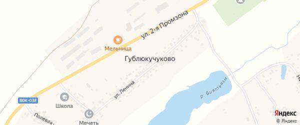 Ближняя улица на карте села Гублюкучуково с номерами домов