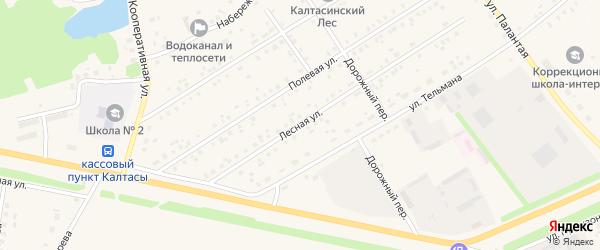 Лесная улица на карте села Калтасов с номерами домов
