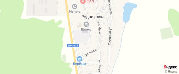 Молодежная улица на карте села Родниковки с номерами домов