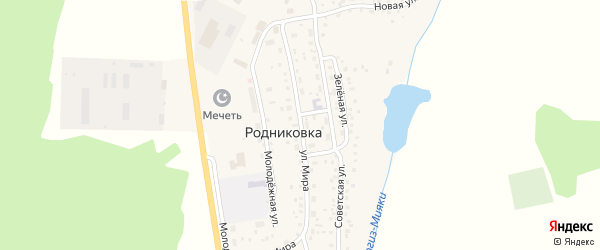 Улица Мира на карте села Родниковки с номерами домов