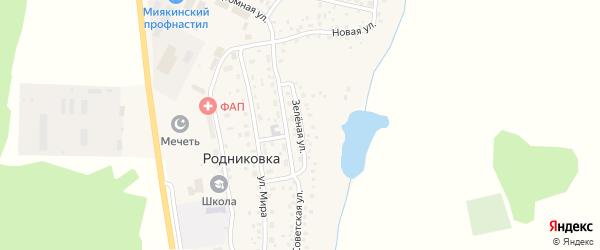 Зеленая улица на карте села Родниковки с номерами домов