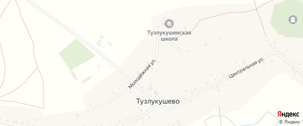 Молодежная улица на карте села Тузлукушево с номерами домов