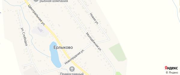Молодежная улица на карте села Ерлыково с номерами домов