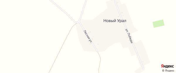 Лесная улица на карте деревни Нового Урала с номерами домов