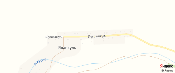 Луговая улица на карте деревни Яланкуля с номерами домов