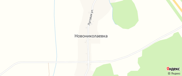Луговая улица на карте деревни Новониколаевки с номерами домов