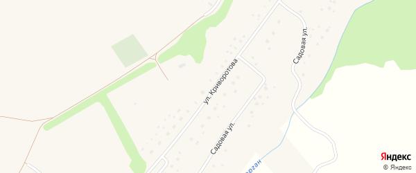 Улица Криворотова на карте села Мирного с номерами домов
