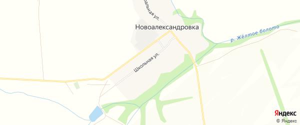 Карта села Новоалександровки в Башкортостане с улицами и номерами домов