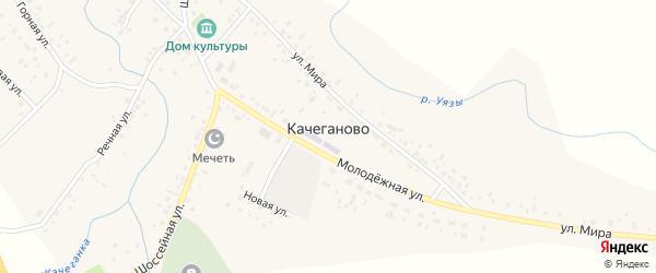 1 Мая улица на карте села Качеганово с номерами домов