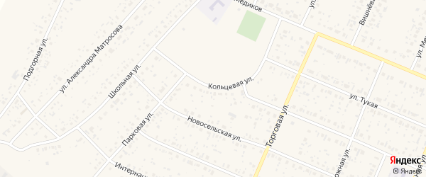 Кольцевая улица на карте села Раевского с номерами домов