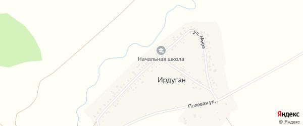 Улица Мира на карте деревни Ирдугана с номерами домов