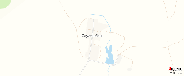 Карта деревни Сауляшбаша в Башкортостане с улицами и номерами домов