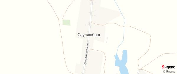 Центральная улица на карте деревни Сауляшбаша с номерами домов