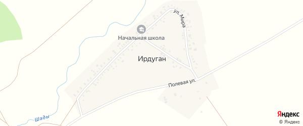 Полевая улица на карте деревни Ирдугана с номерами домов