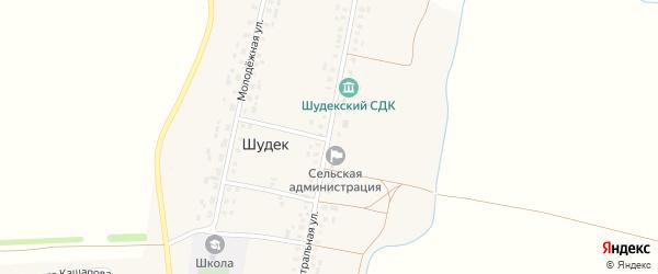 Центральная улица на карте села Шудека с номерами домов
