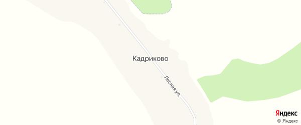 Лесная улица на карте деревни Кадриково с номерами домов