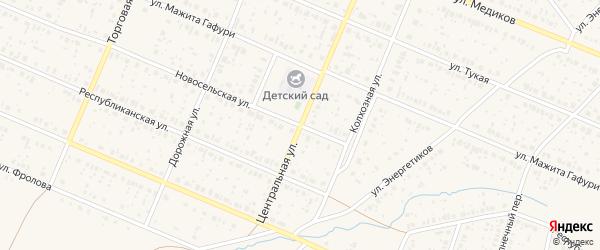 Центральная улица на карте села Раевского с номерами домов