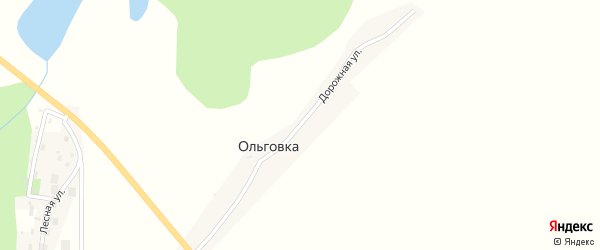 Дорожная улица на карте деревни Ольговки с номерами домов