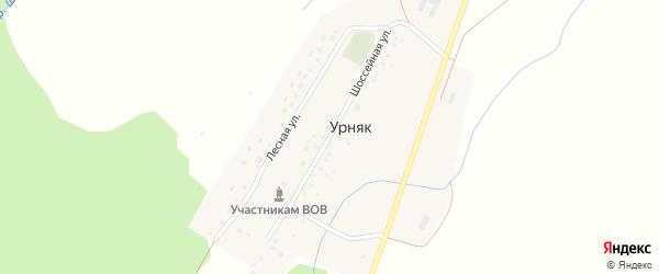 Шоссейная улица на карте деревни Урняка с номерами домов