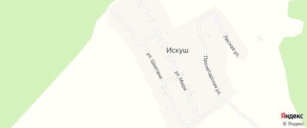Улица Шкетана на карте села Искуша с номерами домов