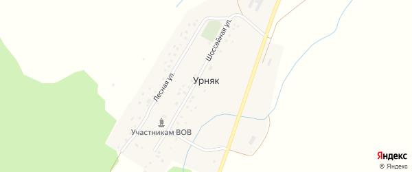 Луговая улица на карте деревни Урняка с номерами домов