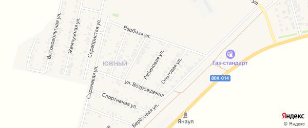 Рябиновая улица на карте Янаула с номерами домов