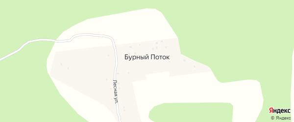 Лесная улица на карте поселка Бурного Потока с номерами домов