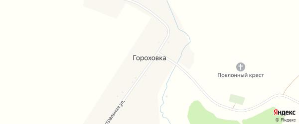 Центральная улица на карте деревни Гороховки с номерами домов