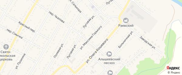 Улица Максима Горького на карте села Раевского с номерами домов