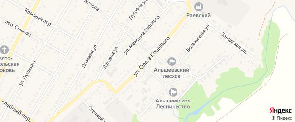 Улица Олега Кошевого на карте села Раевского с номерами домов