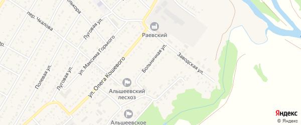 Больничная улица на карте села Раевского с номерами домов