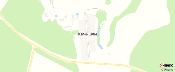 Камышлинская улица на карте деревни Камышлы с номерами домов