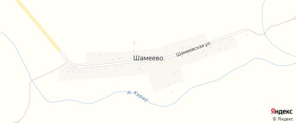 Шамеевская улица на карте деревни Шамеево с номерами домов