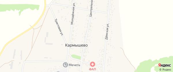 Центральная улица на карте села Кармышево с номерами домов