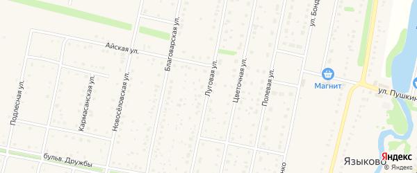 Луговая улица на карте села Языково с номерами домов