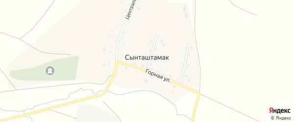 Центральная улица на карте села Сынташтамака с номерами домов