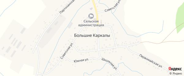 Партизанская улица на карте села Большие Каркалы с номерами домов
