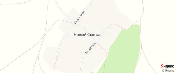 Лесная улица на карте деревни Нового Сынташа с номерами домов