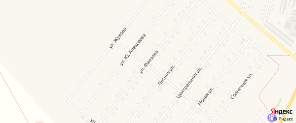 Улица Фаизова на карте села Краснохолмского с номерами домов