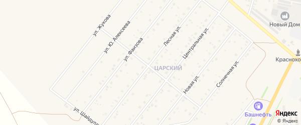 Лесная улица на карте села Краснохолмского с номерами домов