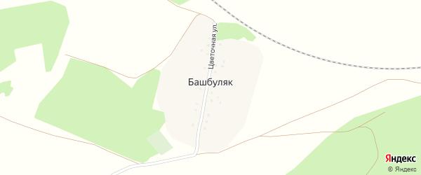 Цветочная улица на карте деревни Башбуляка с номерами домов
