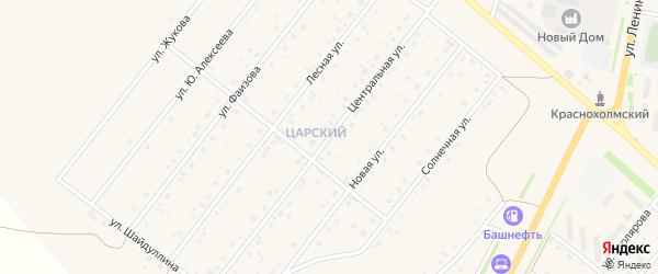 Центральная улица на карте села Краснохолмского с номерами домов