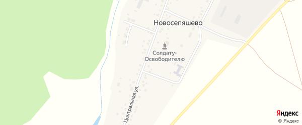 Центральная улица на карте села Новосепяшево с номерами домов