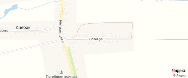Новая улица на карте деревни Киебака с номерами домов